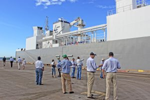 Workers standing on the port with live cattle export ship