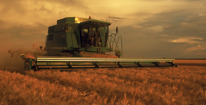 Grain header harvesting a crop at dawn