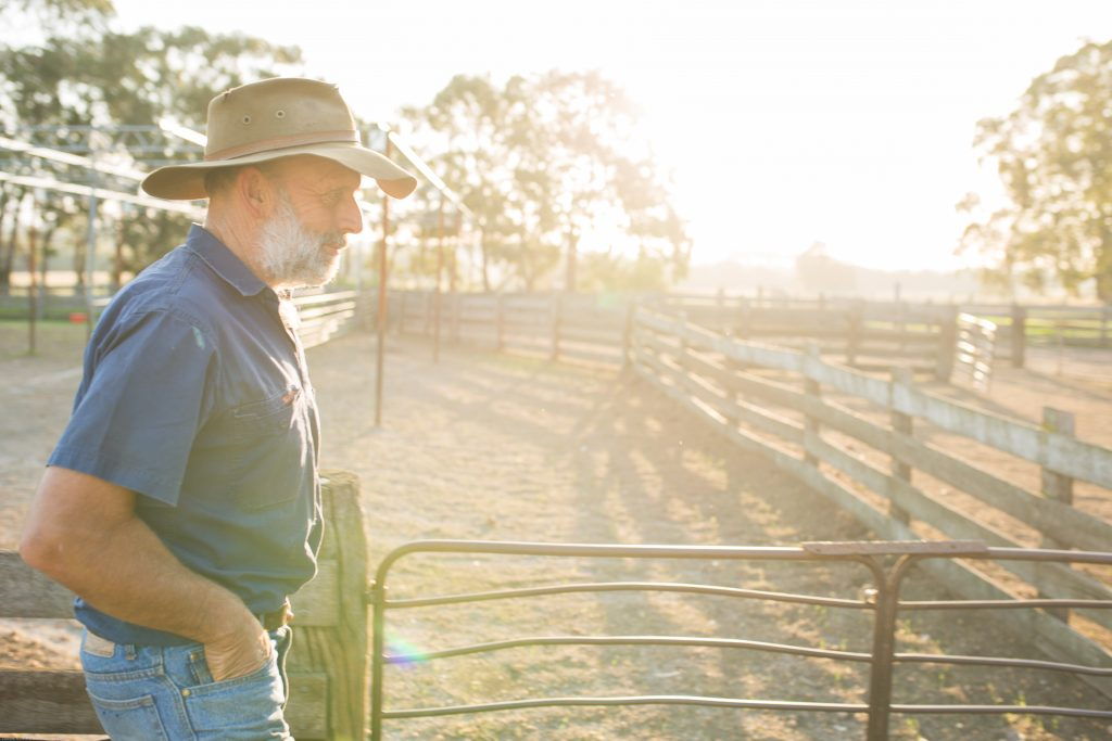 WA sheep farmer looking at empty yards, photo by Chantel Mcalister
