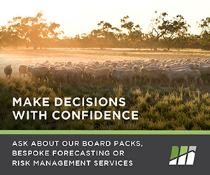 Make decisions with confidence- ask about our board packs, bespoke forecasting and risk management services