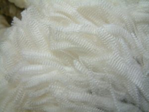 Clean wool fleece