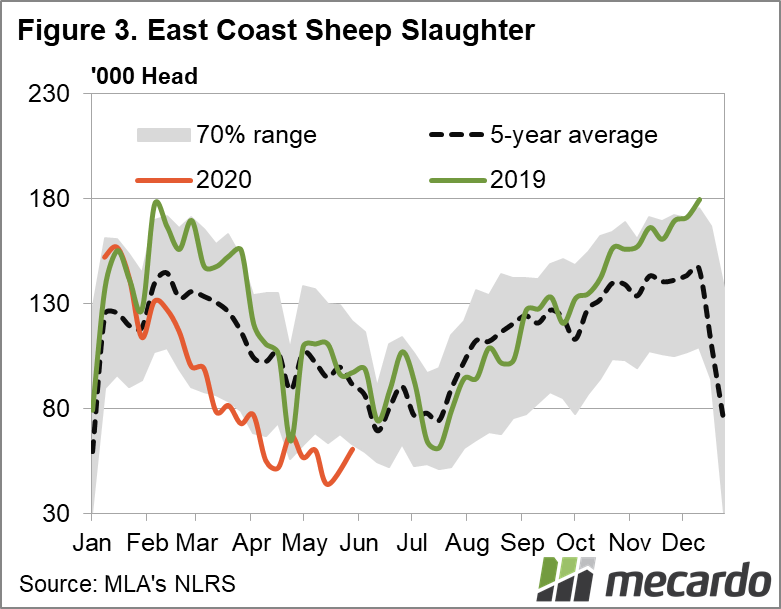 East coast sheep slaughter