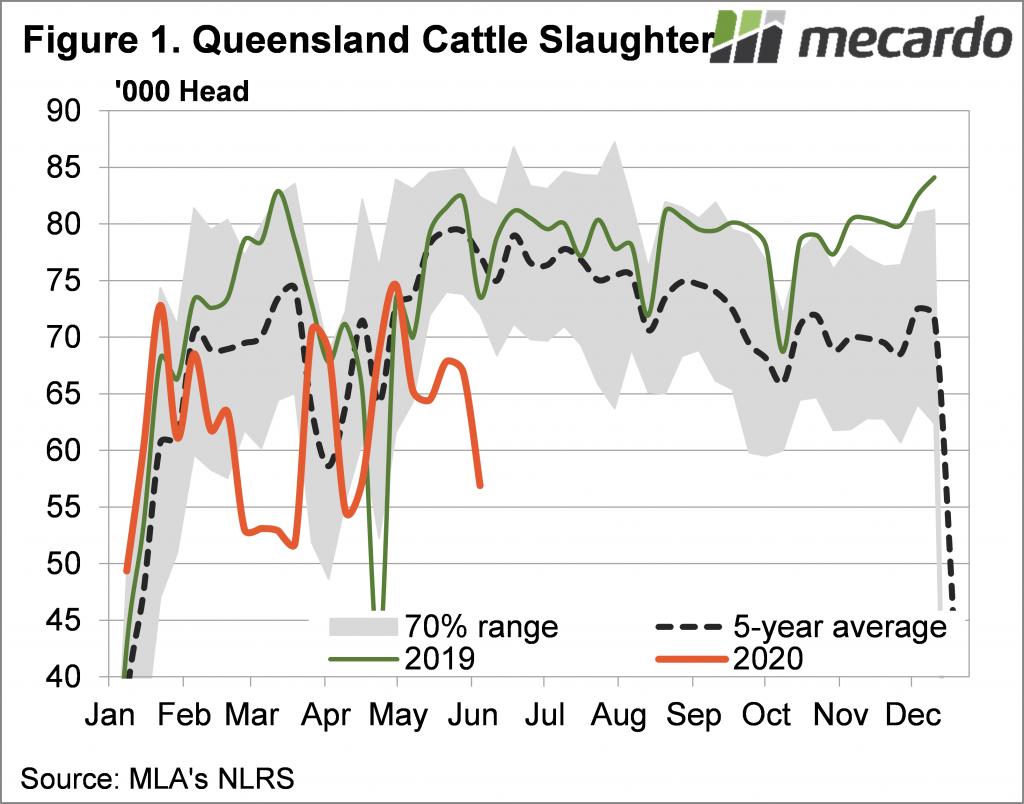 Queensland cattle slaughter