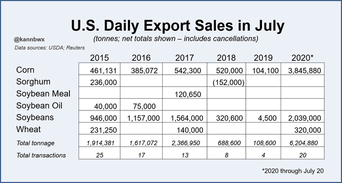 US daily export sales in July