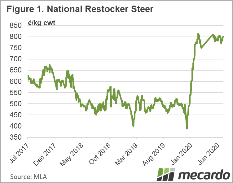 National Restocker Steer Chart