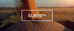 Survey- grain flowing into a truck