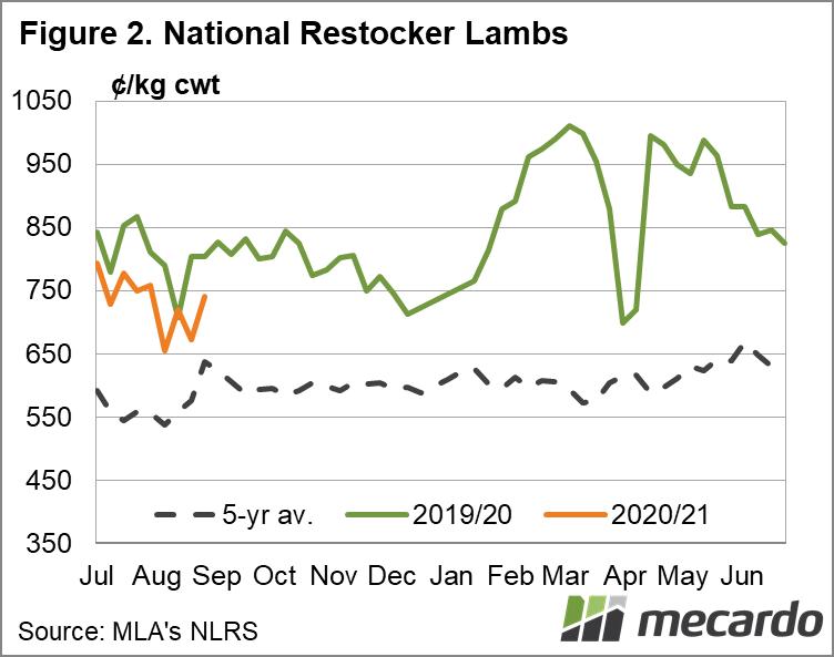 National Restocker Lambs