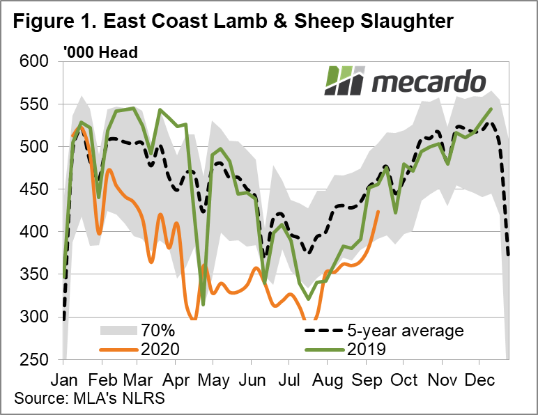 East Coast Lamb & Sheep Slaughter