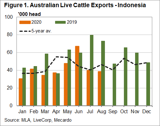 Australian Live Cattle Exports - Indonesia