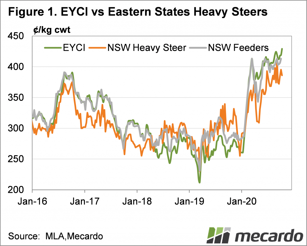 EYCI vs Eastern States Heavy Steers