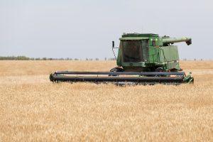 NSW harvesting wheat crop