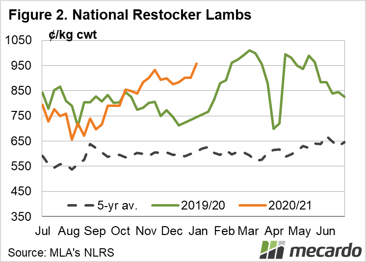 National Restocker Lambs