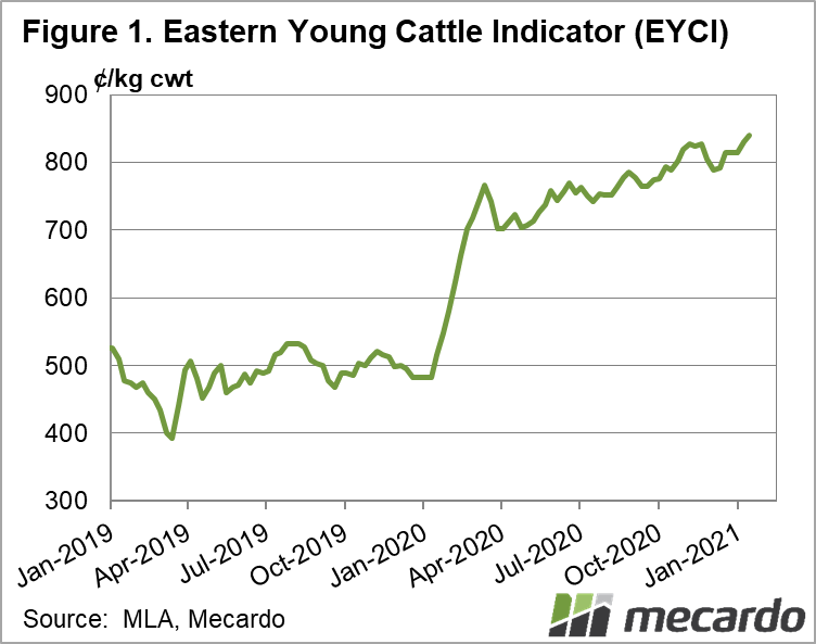 Eastern Young Cattle Indicator (EYCI)