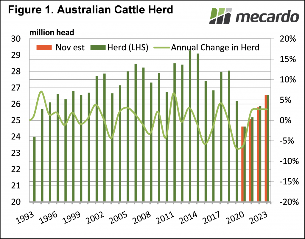 Australian cattle herd