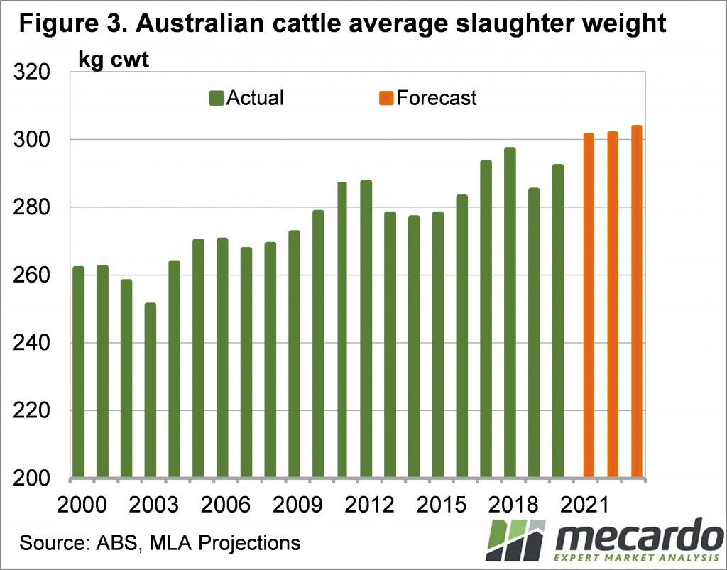 Australian cattle average slaughter weight