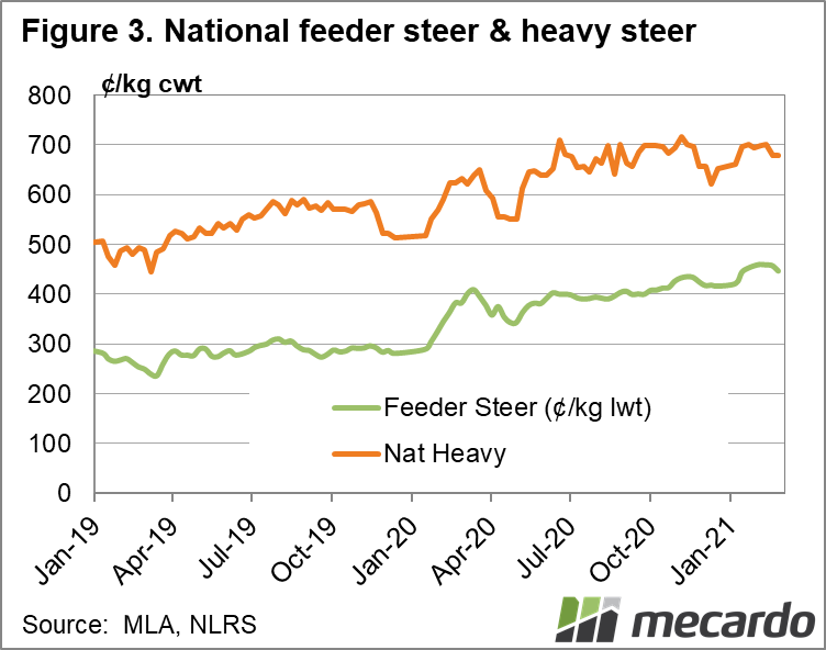 Heavy and feeder steer prices 9/03/2021