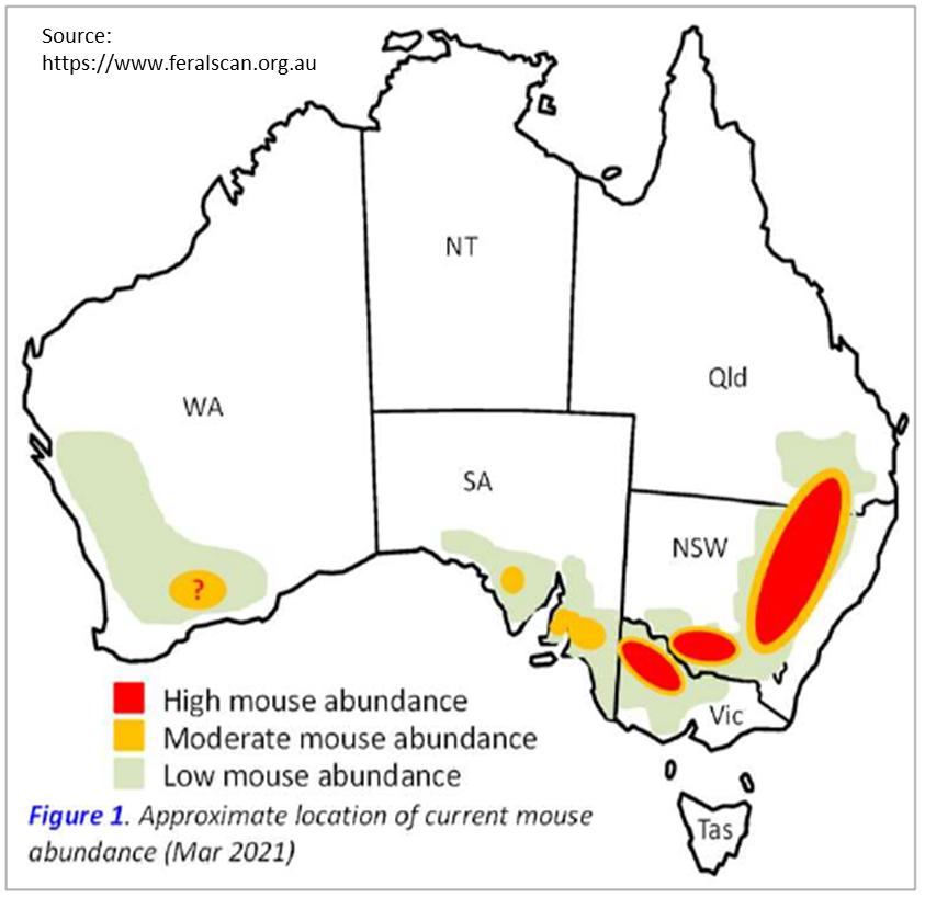 Mice map Australia