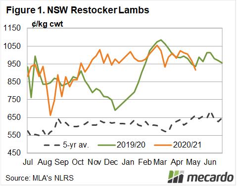 NSW Restocker lambs