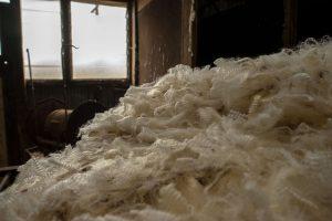 Shorn wool in heap in shearing shed