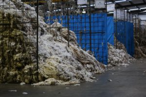 Wool australia