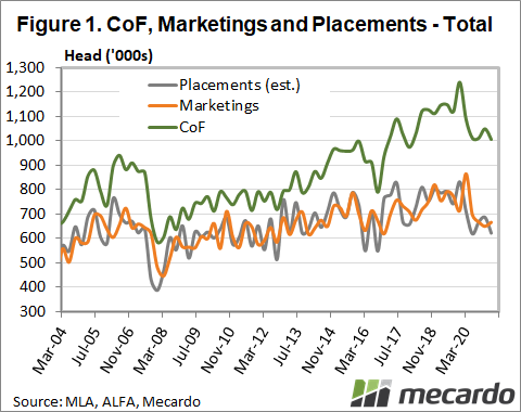 CoF, Marketings & Placements - Total