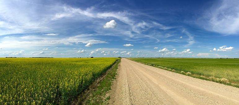 Canada field