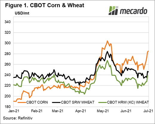 CBOT corn and wheat futures