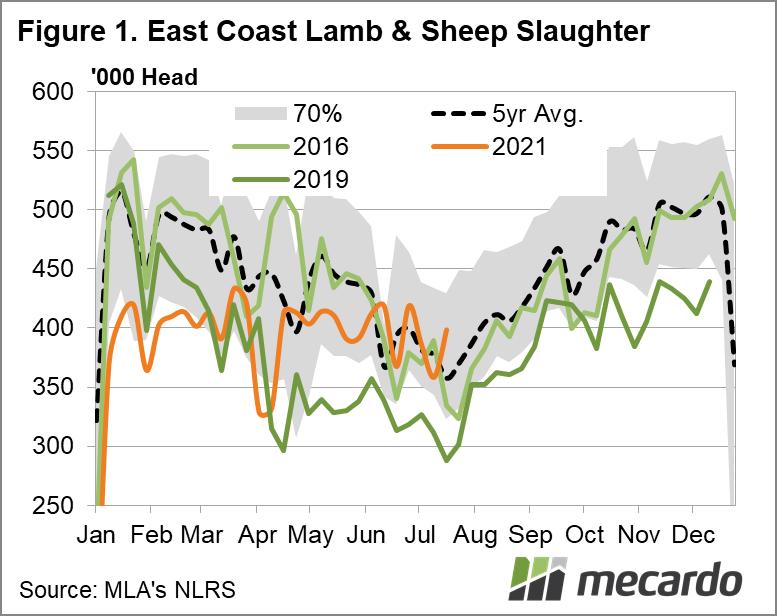 East coast lamb & sheep slaughter
