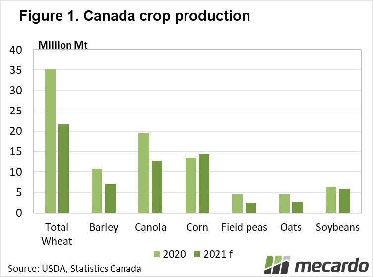 Canada Canola production