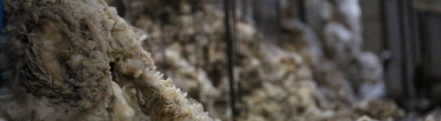 Wool floor