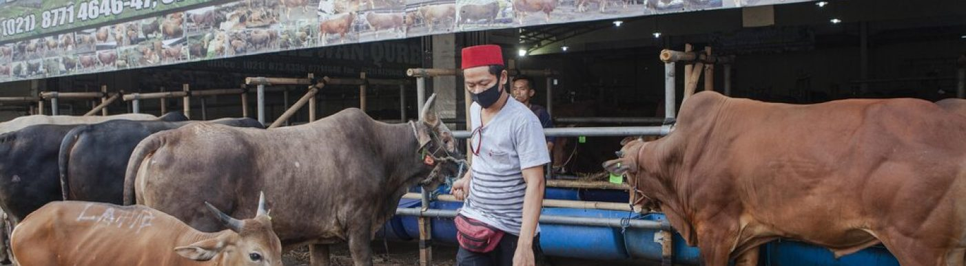 Indonesian Eid Al Adha