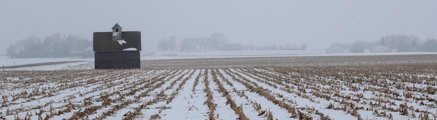 Frozen field US