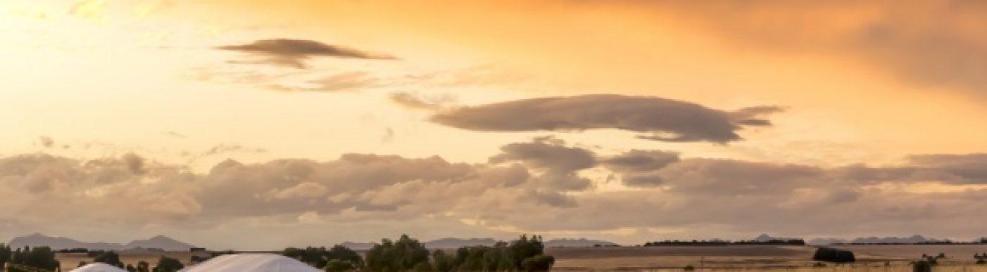 Australian wheat farm