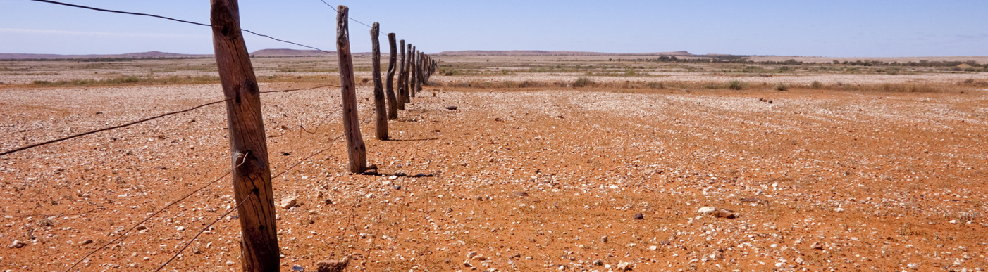 Drought land and fence